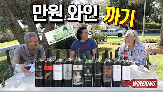 Tasting of easy-to-find cheap wines