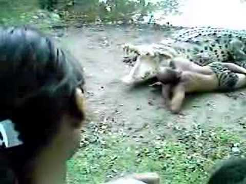 Man tries to get eaten by Crocodile Chito Y Poncho - YouTube