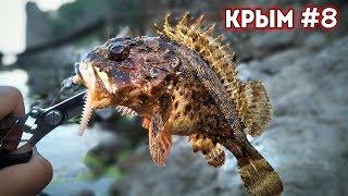 Моя первая СКОРПЕНА / Ловля на Бомбарду / Краб на воблер / Рыбалка с сыном / Цены в Крыму Новый свет