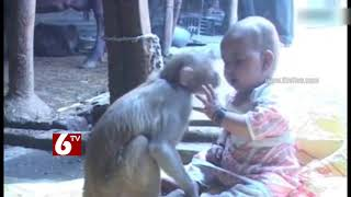 Cute video : Special Relation between Baby and Monkey - 6TV Telangana