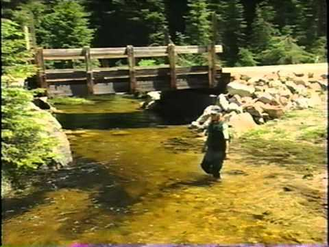Getting Across: Aquatic Organisms And Road-Stream Crossings, A Brief Introduction