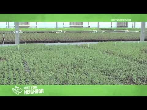 Meet Your Neighbor...Shenandoah Growers Fresh Herbs