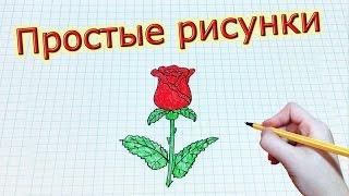 Простые рисунки #185 Как нарисовать РОЗУ(Группа вконтакте: http://vk.com/mssimpledrawings Как нарисовать простой рисунок обычной ручкой за несколько минут. Спас..., 2015-03-16T17:36:45.000Z)