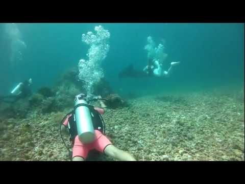 Indonesia Komodo Black Manta(Black Devil Fish) 2012-10-14 Third Diving