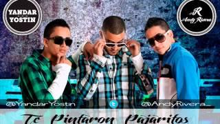 Te Pintaron Pajaritos en el aire Yandar & Yostin ft Andy Rivera