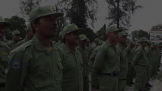 Penyerahan anggota Linmas PAM Pemilukada Tahun 2017 oleh Pemerintah Kota Langsa