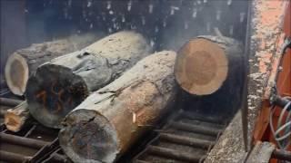 日立製木材破砕機 ZR260HCで丸太(生木)破砕動画 thumbnail