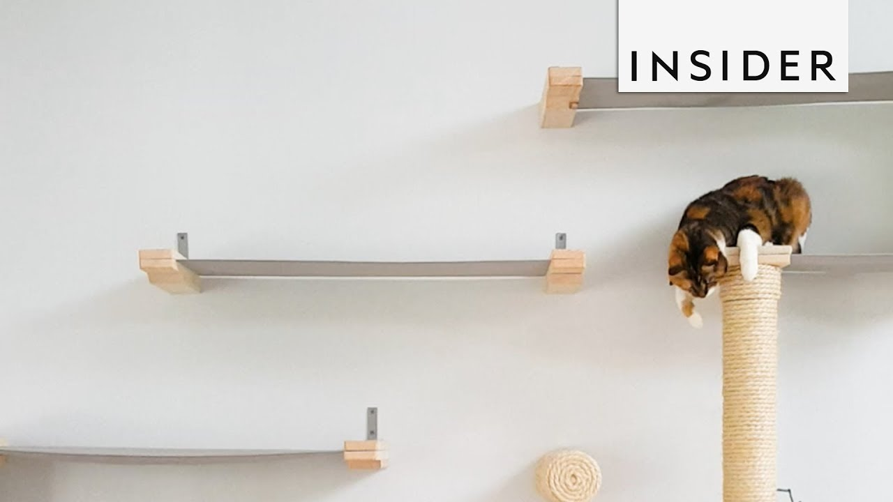Company Makes Intricate Furniture for Cats
