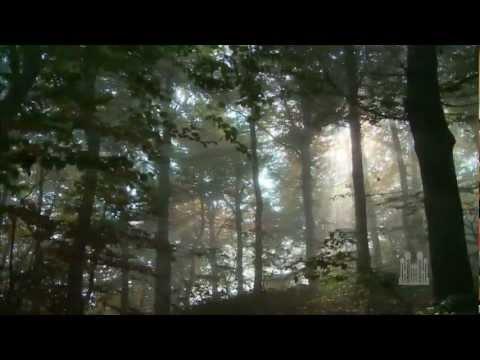 Lead, Kindly Light - Mormon Tabernacle Choir