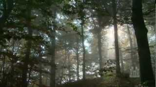 Lead Kindly Light - Mormon Tabernacle Choir