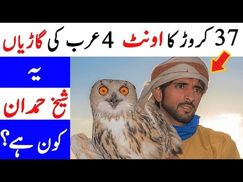 Richest Prince Ever | Sheikh Hamdan Lifestyle, Planes, Cars, Pets (Urdu/hindi)