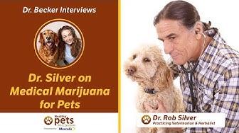 Dr. Becker & Dr. Silver on Medical Marijuana for Pets