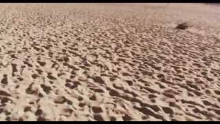 ИСПАНИЯ: Миражи...) в пустыне на острове Фуэртевентура... Канары Fuerteventura