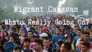 The Truth About The Migrant Caravan Crisis