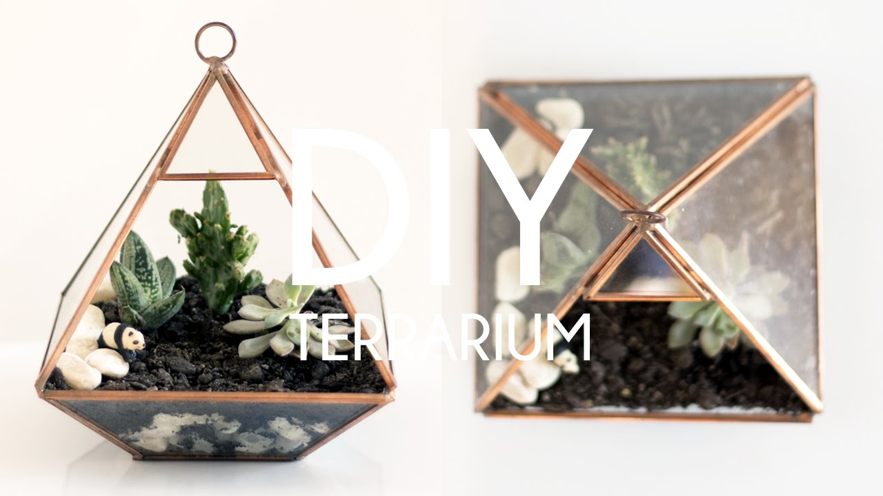 Diy Terrarium Tumblr Plant Decor Youtube