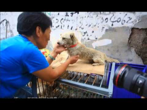 """""""Better Place"""" (song for Yulin)"""