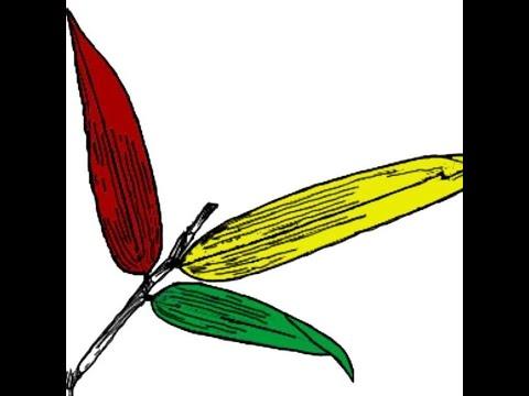 Daun Bambu - Gembel Pahlawan
