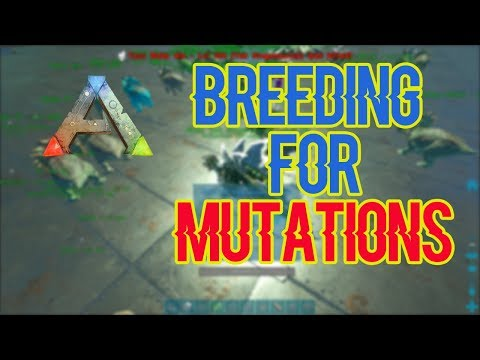 Breeding For Mutations! | Small Tribes(Official PVP) - ARK: Survival Evolved