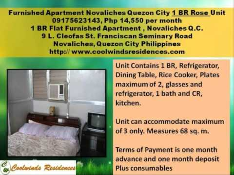 1 BR Furnished Apartment Novaliches in Quezon City Philippines