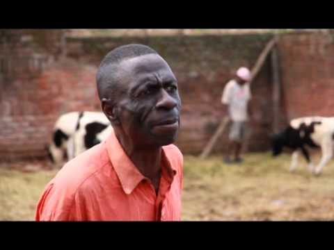 GOtv Malawi Izeki ndi Jakobo Chamwini Kutukwanitsa