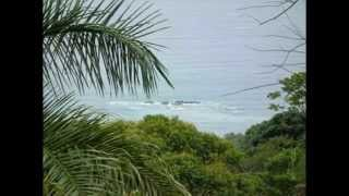 Dominical Real Estate - 1.5 - 1.75 ACRES - 3 Lots - Ocean Views With Good Access!