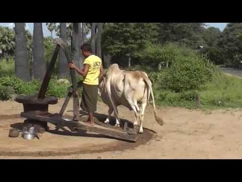 Myanmar 04 Bagan  2 days youtube