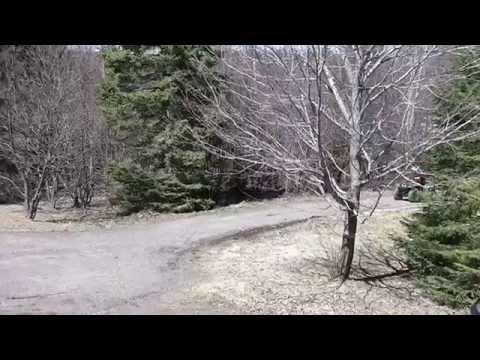 Beats shoveling and raking the driveway!