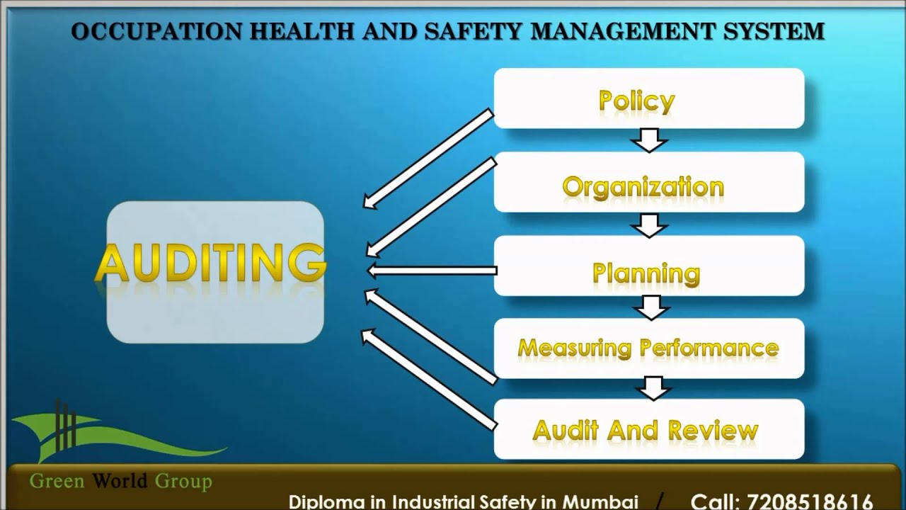 health and safety management Course description gain the knowledge you need to implement a fully functioning health and safety management system suited to the needs of your organization.