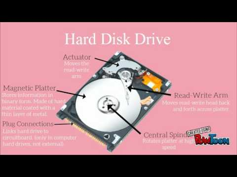 Types of Data Storage