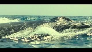 Exploring Oceans - Disneynature Oceans - Core Meltdown