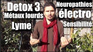 La détox (c'est du bidon !) 3 - Electro-sensibilité, métaux lourds, lyme, etc... - www.regenere.org