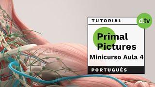 DOTLIB - Primal Pictures - Mini Curso (Aula 4)