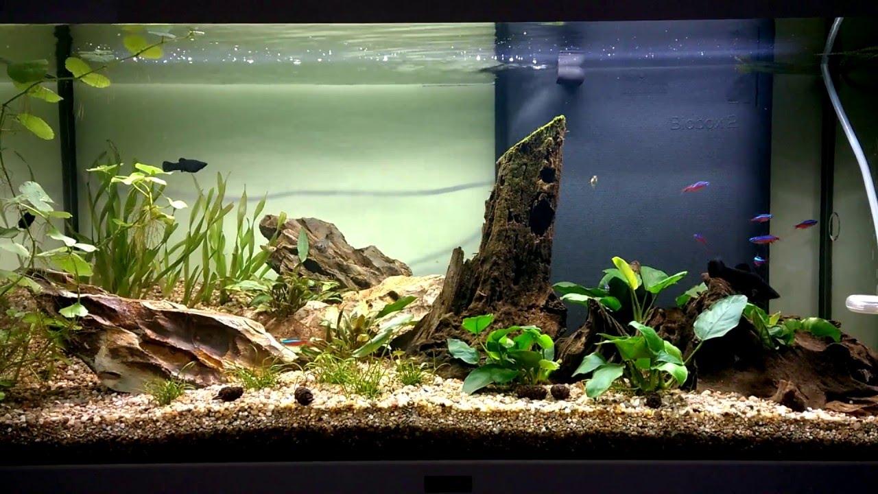 Hervorragend Aquarium Aquatlantis led style 112 liter - YouTube NH34