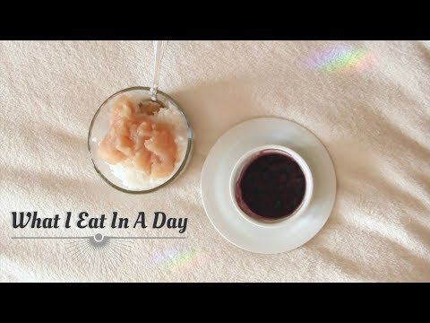 What I Eat In A Day    Low Histamine Diet