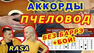 ПЧЕЛОВОД Аккорды 🎸 RASA ♪ Разбор песни на гитаре ♫ Бой Текст