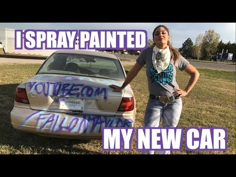 I SPRAY PAINTED MY CAR (DON'T TRY THIS AT HOME)