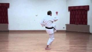 Wado Karate Pinan Yodan performed by Neil Pottinger