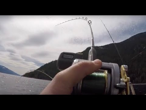 Rainbow Trout Fishing On Kootenay Lake