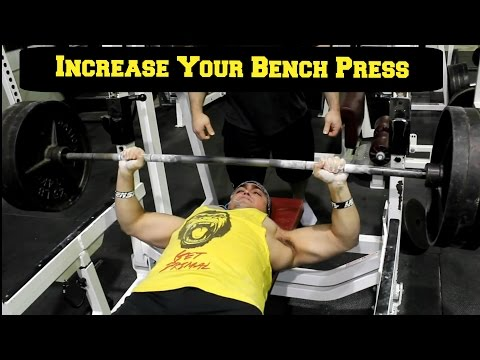 INCREASE YOUR BENCH PRESS (Free Program)