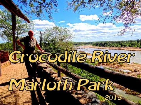 Crocodile River KrugerPark   South-Africa  2015