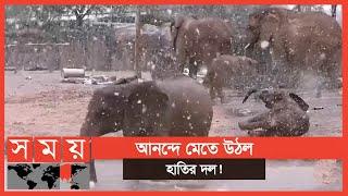 রোদের মধ্যে বিরল তুষারপাত! | Elephent | Somoy TV