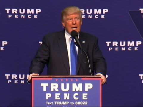 Trump on WH Bid: I Became the Ultimate Outsider