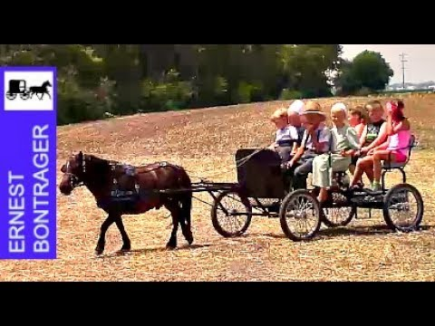 First Wheat Threshing Show at Illinois Amish Heritage Center