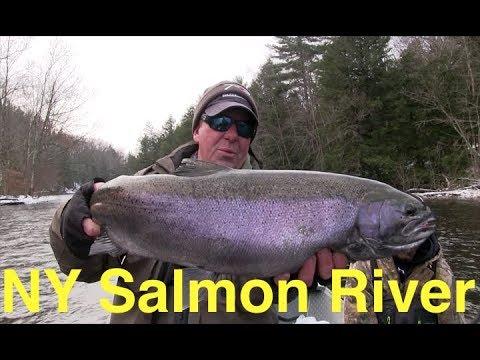 New York's Salmon River Steelhead