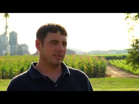 Kansas Farmer Uses 100% Organic Pesticide on His Corn Crop