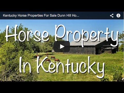 Kentucky Horse Properties For Sale Dunn Hill Horse Farm