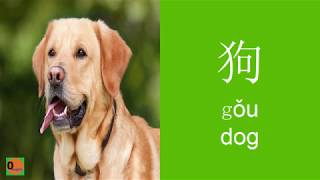 Chinese vocabulary of subjects - Học tiếng Trung theo chủ đề