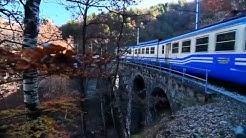 Ferrovia Vigezzina-Centovalli. Un viaggio lungo una fiaba.