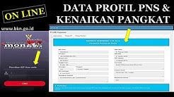 CARA MELIHAT DATA PROFIL PNS & KENAIKAN PANGKAT ONLINE DI BKN