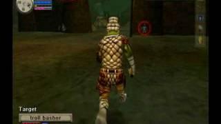Everquest Online Adventures: Review